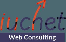 Consulenza e Management di progetti web Logo